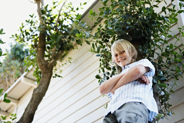 Boy leaning against tree