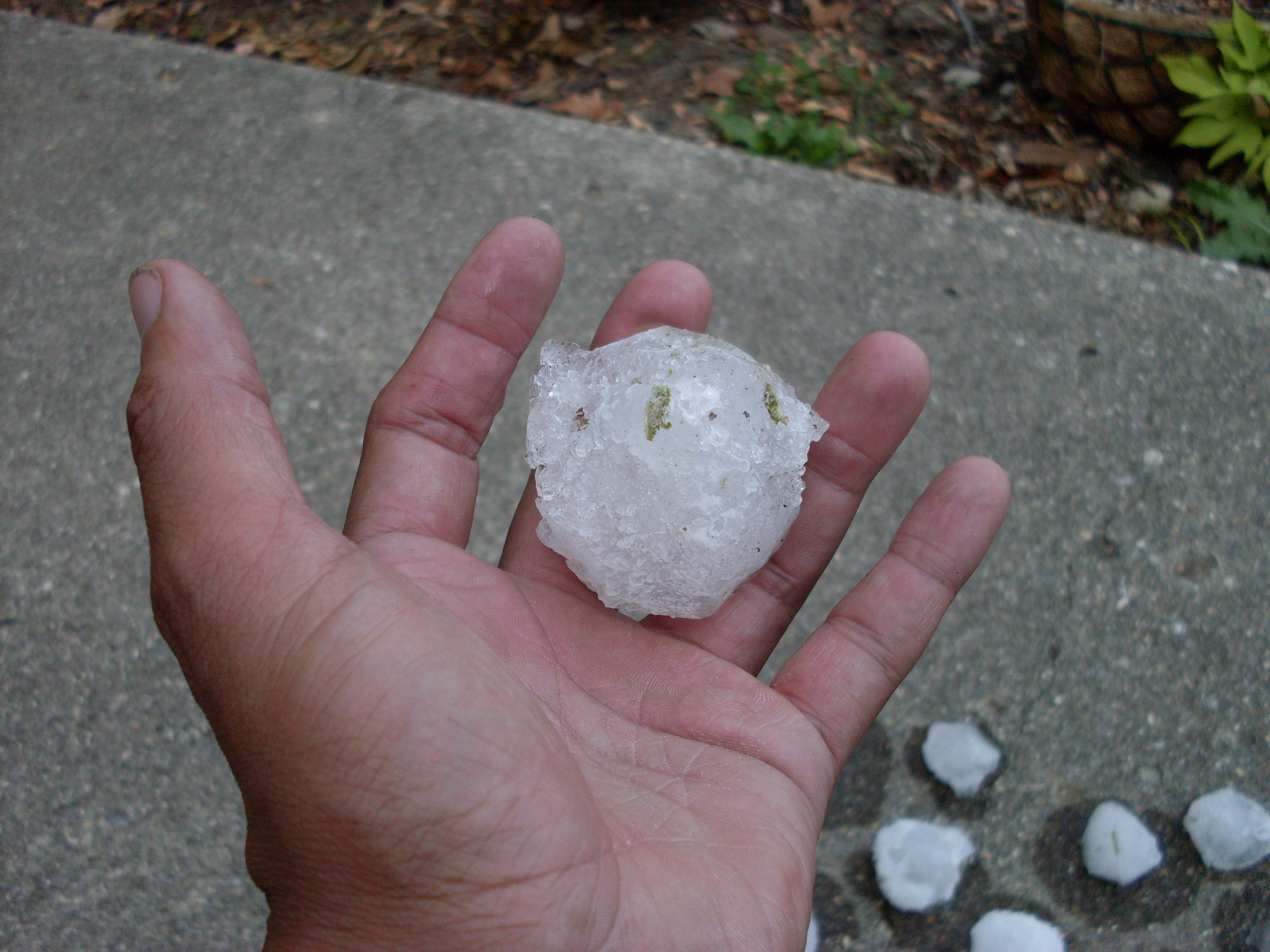 Golf Ball-size Hail Stone