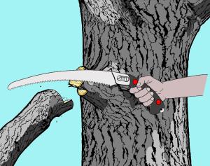 Ternary Pruning Method step 02