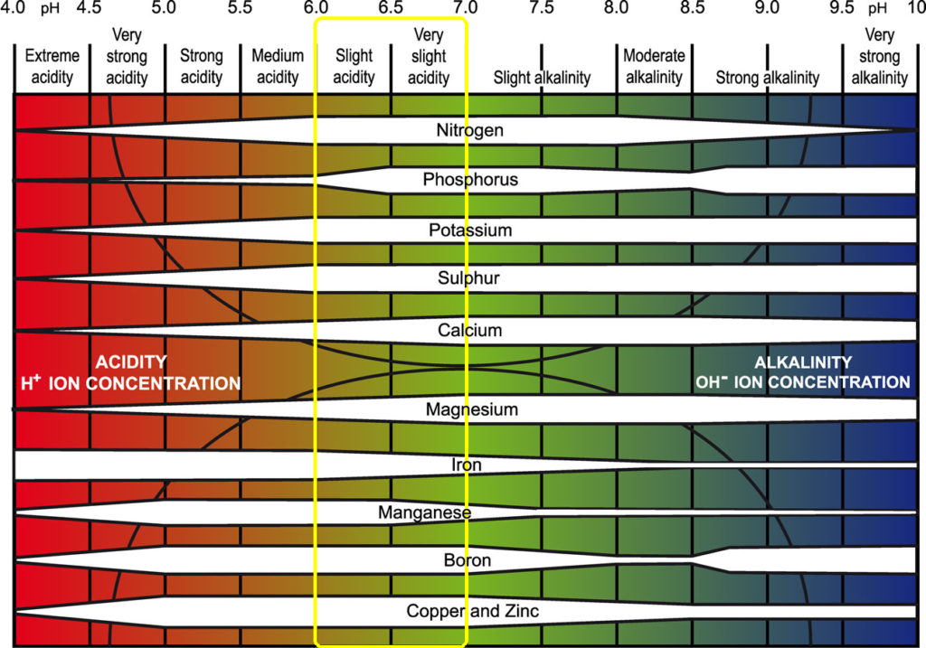Acidic vs Alkaline Soil Chart
