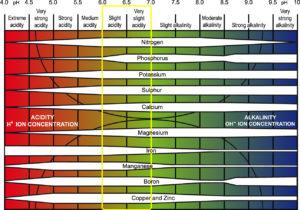 Acidic vs Alkaline Soil Chart